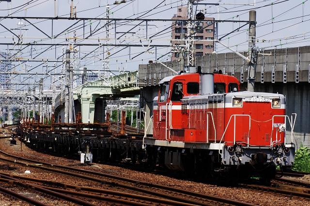 IMGP4340.jpg