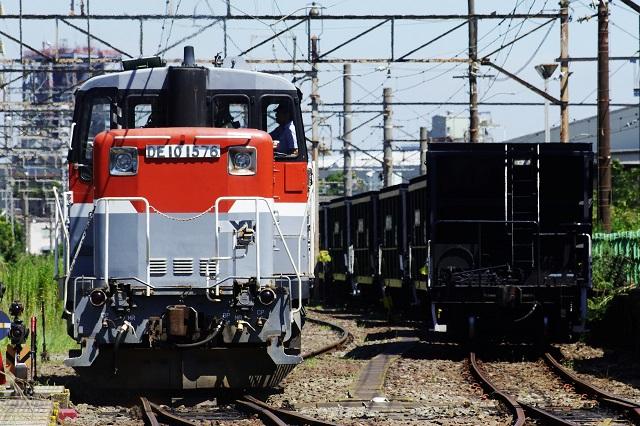 IMGP5149.jpg