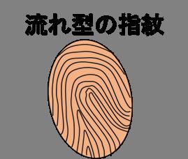流れ型指紋