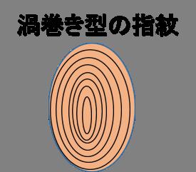 渦巻き型指紋