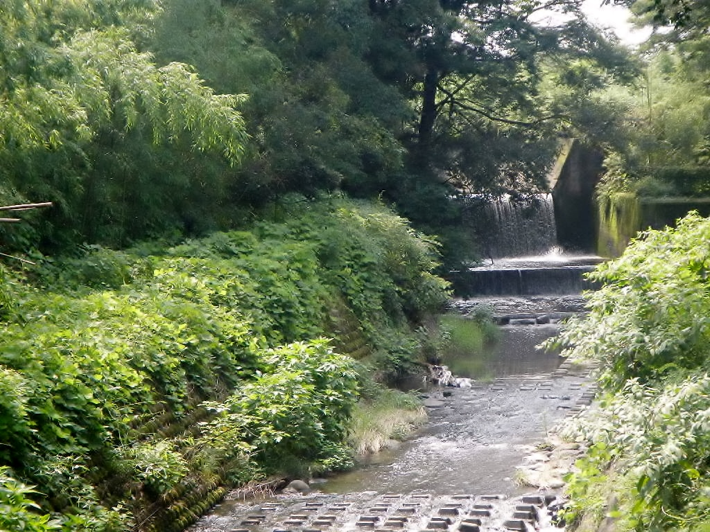 堤下公園がある高崎市棟高町(むねだかまち)