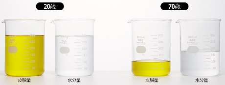 新発想!肌システムに着目した、浸透型ローション・化粧水&皮脂美容オイルクリーム【クィーンズバスルーム】