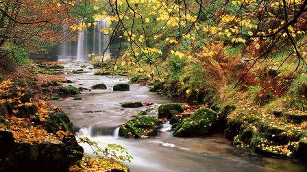 美しい自然3