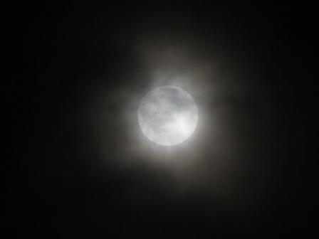 きれいな月だったのに