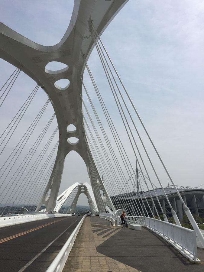 20160416_安城豊田自転車道路(10)web
