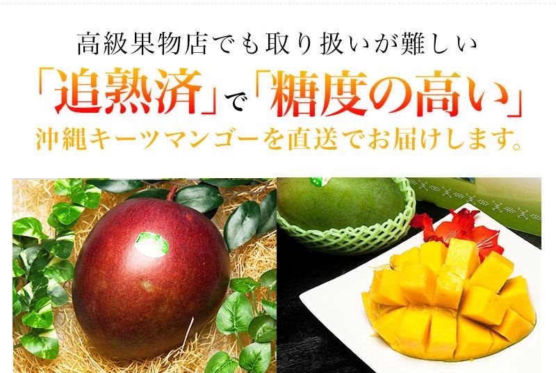 f-img02k_red.jpg