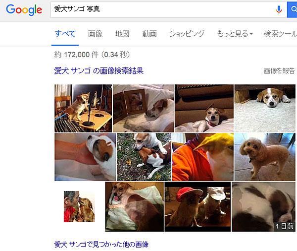 上江田武信 写真