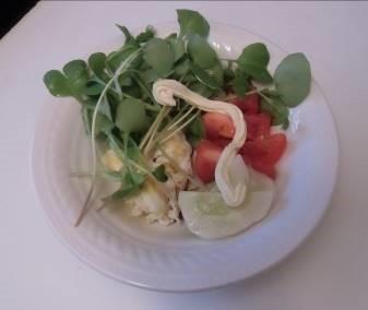 男料理4野菜サラダ