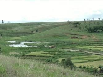 マダガスカルの棚田2