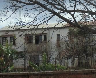 マダガスカルの冬枯れの様子1
