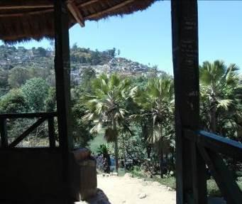 マダガスカル公園1