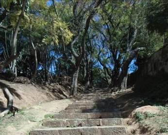 マダガスカル公園2