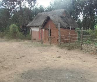 マダガスカルの田舎風景1
