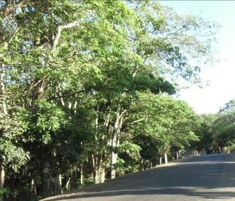 マダガスカルの田舎風景2