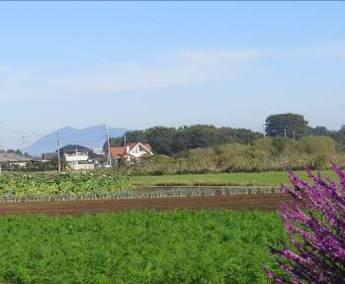菜園近くから見えるつくば山10月