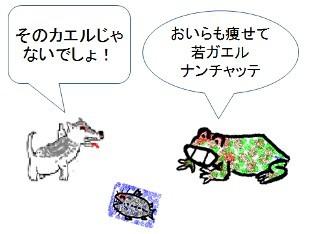 若ガエル漫画絵