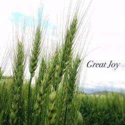 greatjoy