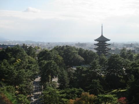 奈良県庁屋上からの眺め・興福寺方面