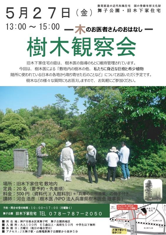 0527樹木観察会
