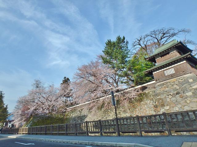 20160409高島城の桜 (24)