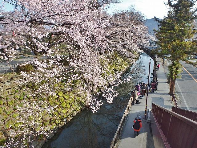 20160409高島城の桜 (28)
