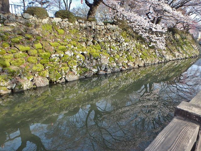 20160409高島城の桜 (32)