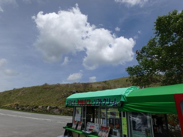 20160611富士見台のレンゲツツジ (5)