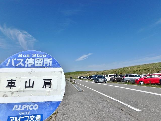 20160618車山肩のレンゲツツジ (36)