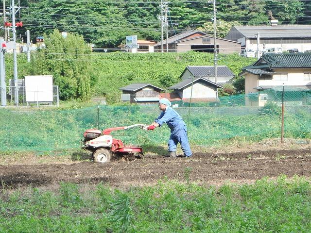20160626川岸の畑の草刈 (10)