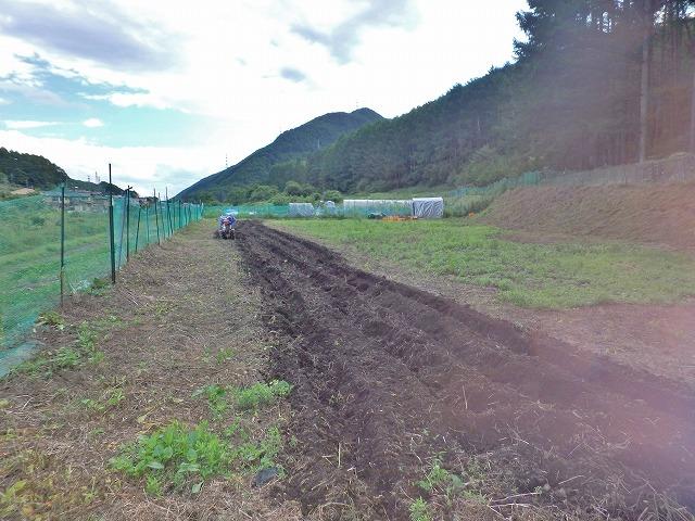 20160626川岸の畑の草刈 (1)