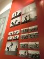 「ビオメハニカ」の展示バネル
