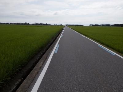 富山湾岸サイクリングコース