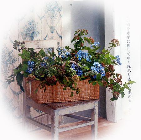 6月花カレンダ-