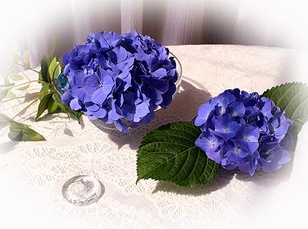 紫陽花カット のコピー