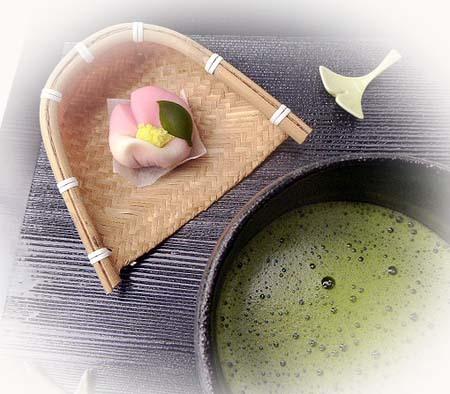 山茶花でお抹茶