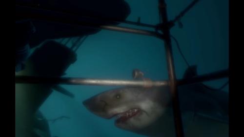 PSVR体験会 ソニーストア名古屋にサメ出没!食われるかと思った-44