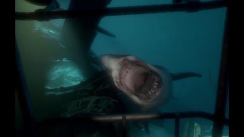 PSVR体験会 ソニーストア名古屋にサメ出没!食われるかと思った-46