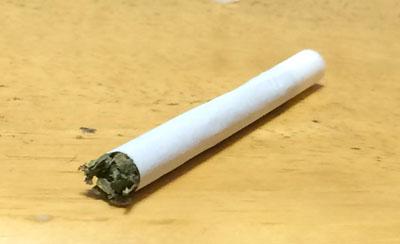 キャメロンバレー ニコチンフリー Camelon_Valley_NIKOTIFREI ニコチンフリー ハーブ系シャグ 手巻きタバコ RYO
