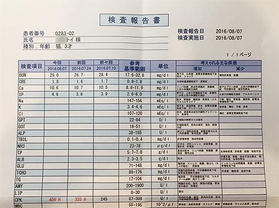 blog_000008160.jpg