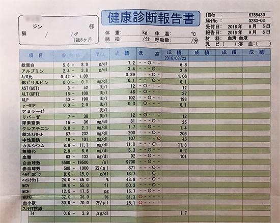 blog_000008394.jpg