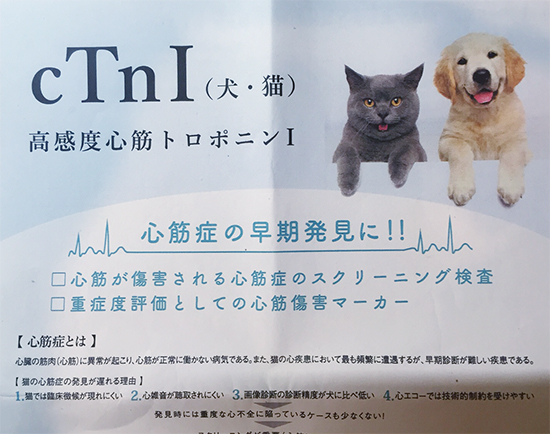 blog_000008563.jpg