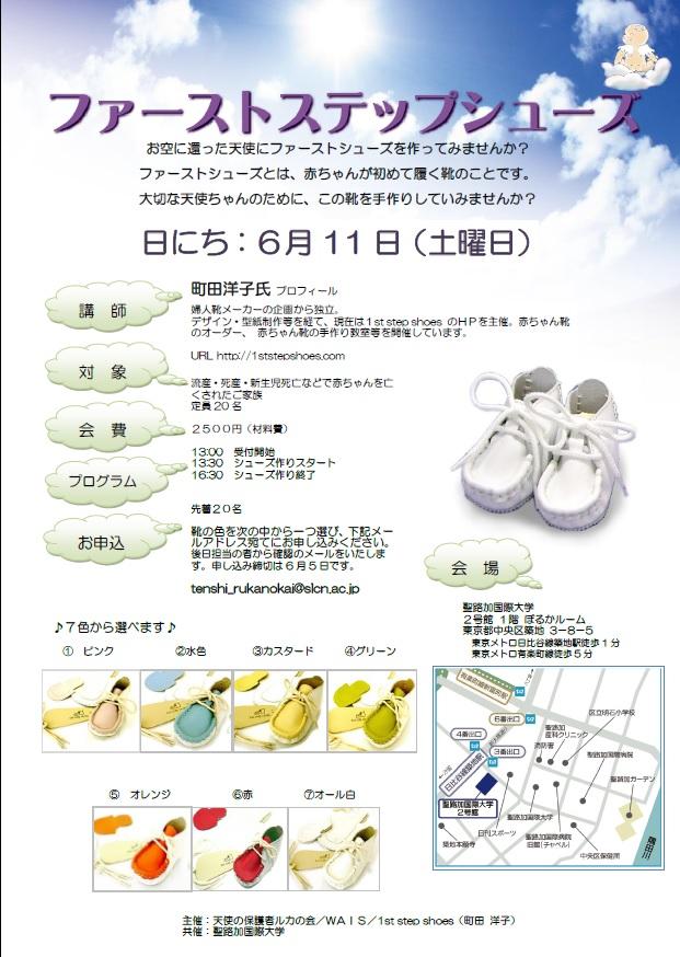 1ststepshoes2016.jpg