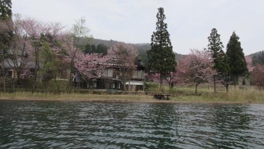 4月24日青木湖花見カヌー (6) (520x293)