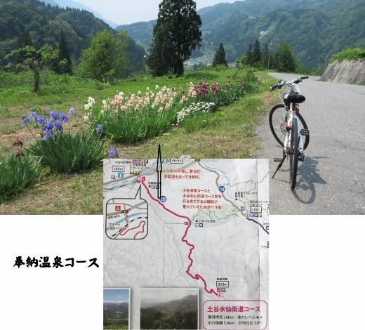 奉納温泉コース2 (520x470)