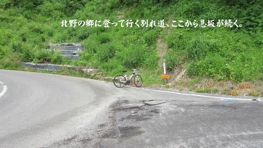 6月4日深山大網コース (3) (520x293)