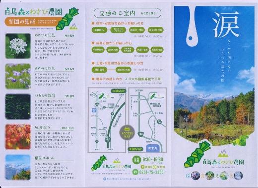 白馬森のわさび農園パンフ1 (520x378)