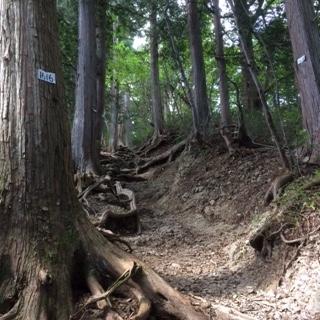御岳奥の院への道