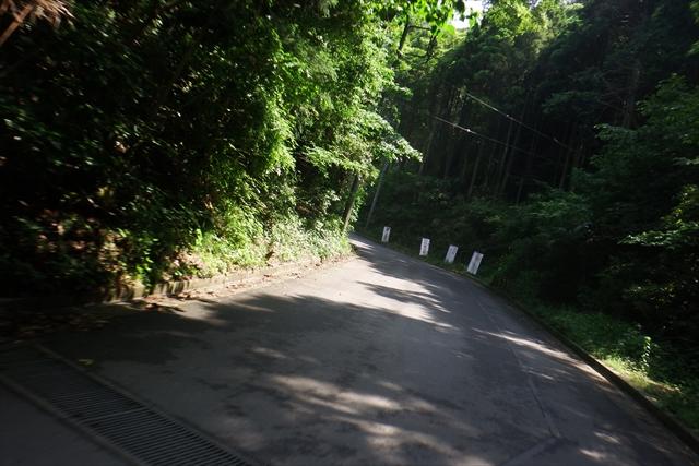 0603_shizutour006.jpg