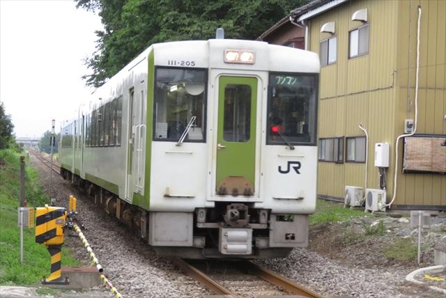 0621_シャンゴ024
