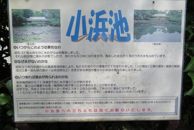 0709_静岡鉄旅013